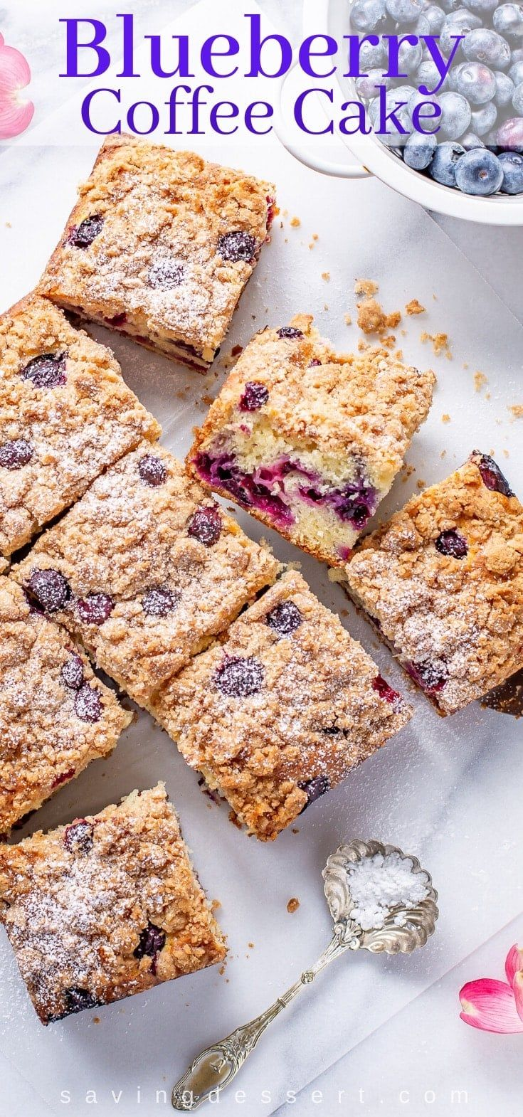 blueberry coffee cake with cinnamon streusel  recipe in