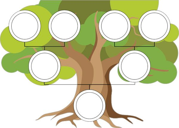 family tree template poster free eyfs ks1 resources for