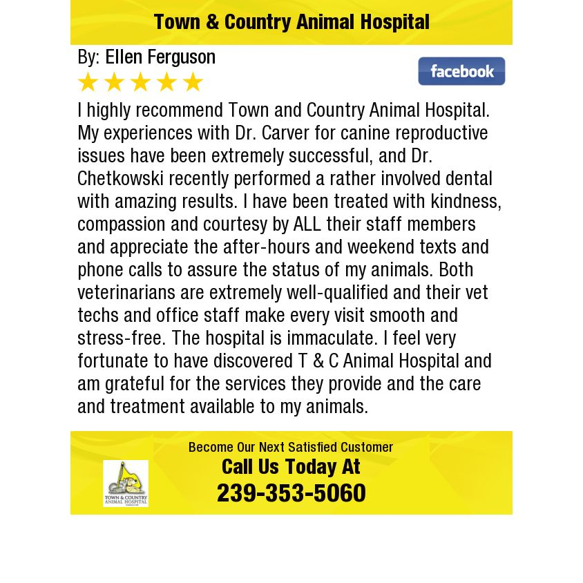 10++ Center hill animal clinic ideas in 2021