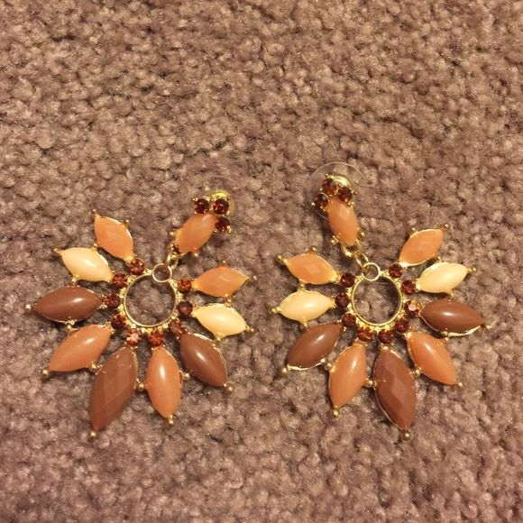 Brown ombre earrings Never worn adorable earrings! Francesca's Collections Jewelry Earrings