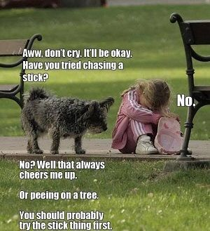 Cheer Up Funny Picture Gallery Funny Jokes Funny Pictures