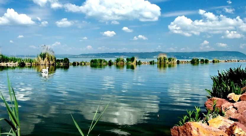 the lake balaton by - photo #42