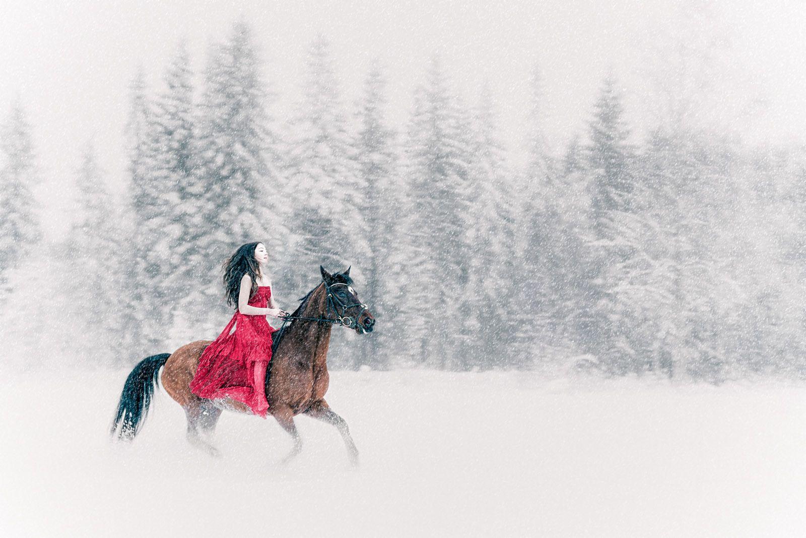 Conceptual photographer – Snow White - Follow me on: www.anhede.se • www.instagram.com/anhede • www.facebook.com/photographeranhede • https://plus.google.com/+JesperAnhede - #snowwhite #snow #rider #horse #winter #fairytale #snövit #snö #ryttare #häst #vinter #saga #grimm #anhede #konceptuellfotograf #conceptualphotographer #concept #koncept