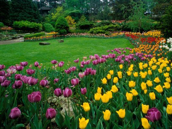 277ef7f09d93c62ee0c7a72f7e3dbbf7 - Royal Botanical Gardens Hamilton Ontario Canada