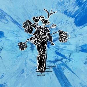 Name Supermarket Flowers Singer Ed Sheeran Release Date March 3 2017 Genre Pop Length 3 Supermarket Flowers Lyrics Ed Sheeran Cover Flower Lyrics