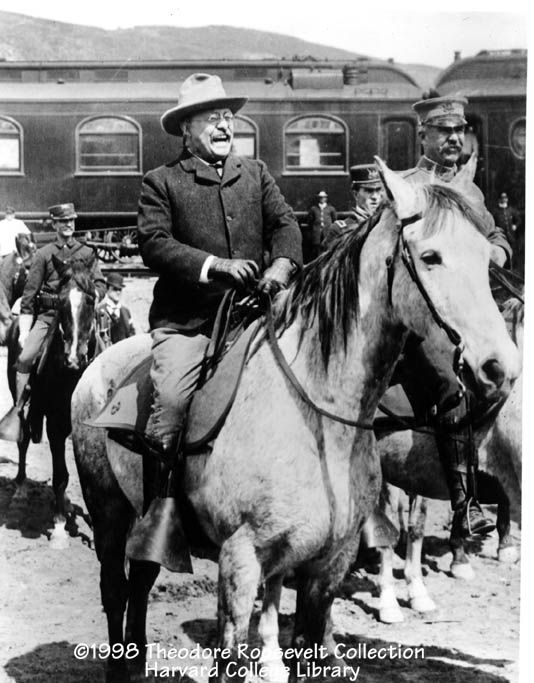 In 1903, President Roosevelt came to inspect Yellowstone.
