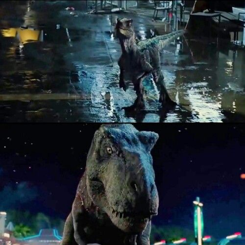 Jurassic World Blue And Rexy