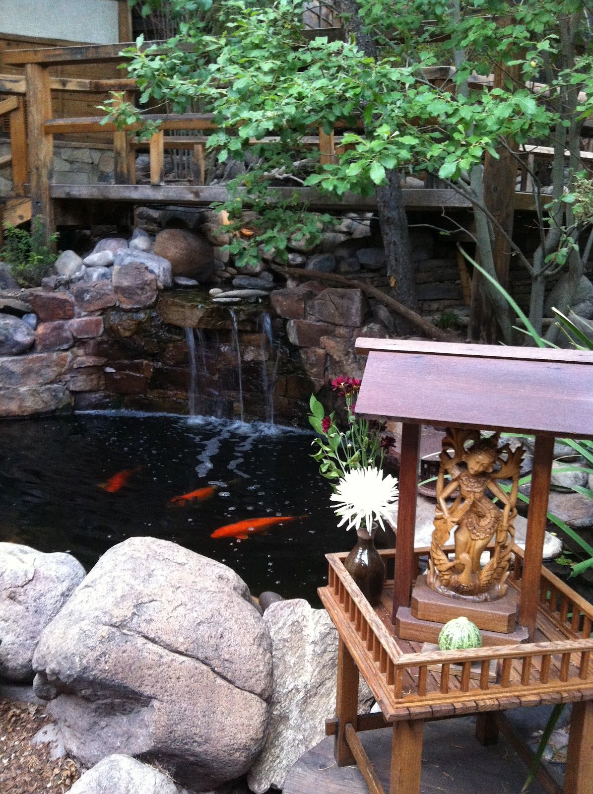 Aquascape Your Landscape: Designing Your Dream Pond |Gentle Waterfall Pond