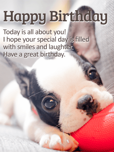 Send Free Playing Puppy Happy Birthday Card To Loved Ones On Greeting Cards By Davia Its 100 And You Also Can Use Your Own Customized