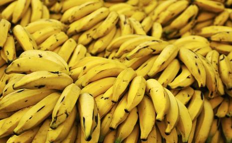 Huerto Evolutivo: La Fruta de Dios (¿o quizásno?)