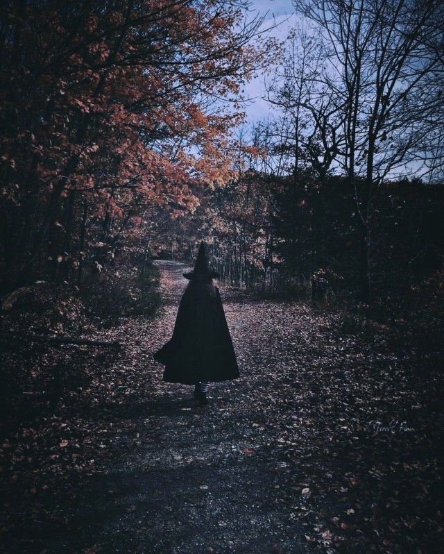 Friends in low places. - #aesthetic #autumn #Fall #ghost #ghosts #halloween #nature #pagan #paranormal #retro #spooky #vintage #vsco #witch #witchcraft #witchy #witch garden aesthetic