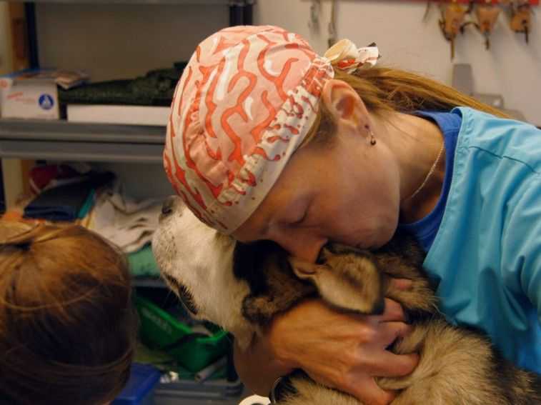 Dr. Oakley, Yukon Vet - Nat Geo WILD - Animal Guru  In performing her arduous and often dangerous duties, Dr. Oakley is motivated by her lifelong love for animals and fascination with them.