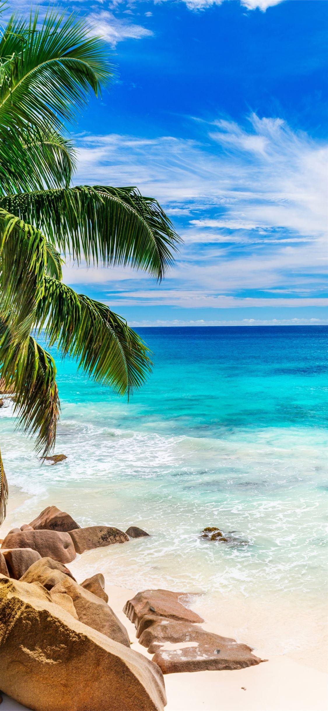 Beach in Seychelles Earth Beach Blue Horizon Ocean ...