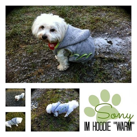 photokraphy: *Free-Book* Hundehoodie | Nähen | Pinterest | Hunde und ...