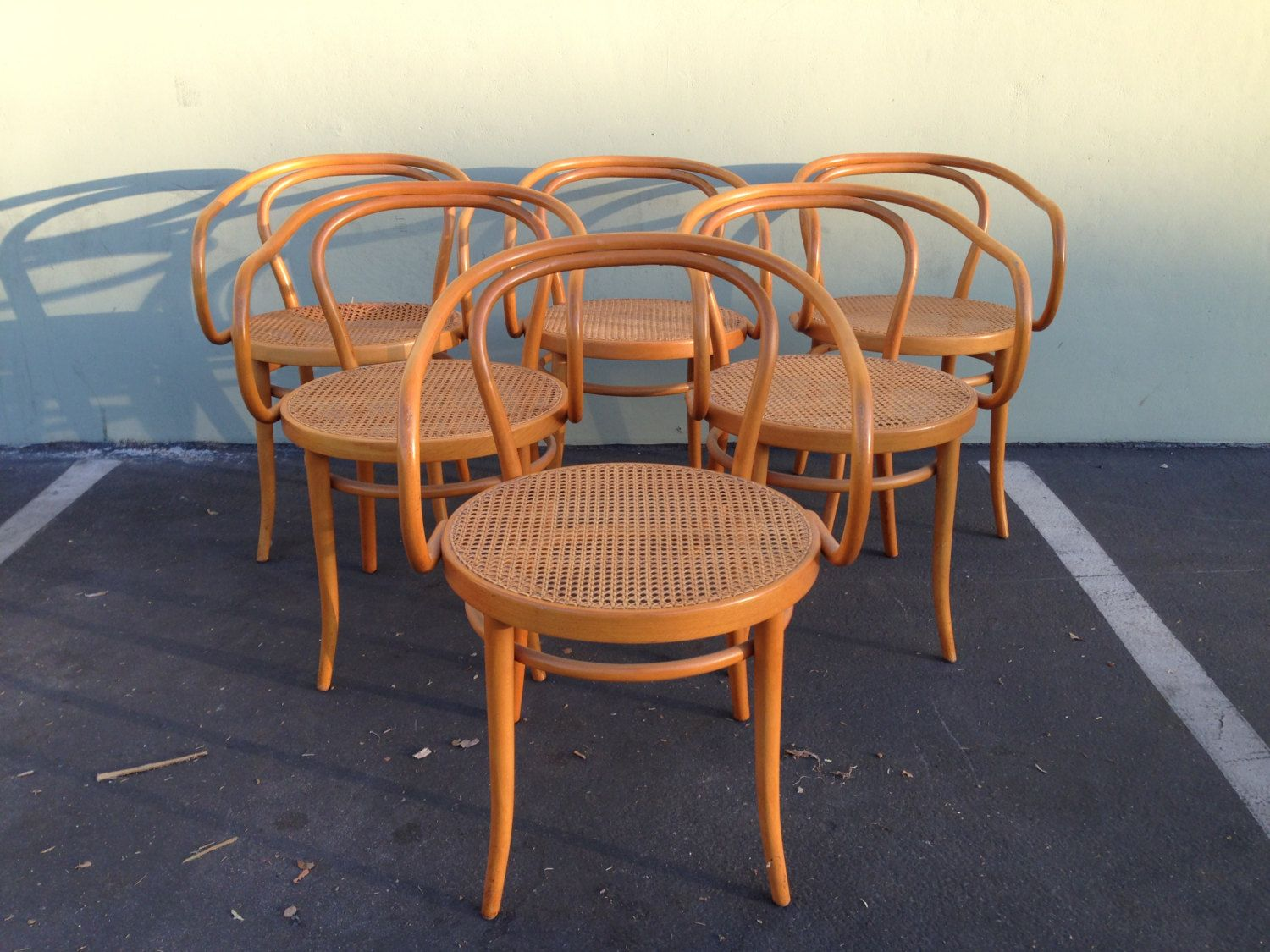 6 Stendig Thonet Bentwood Chairs No B9 Dining Chair Wood