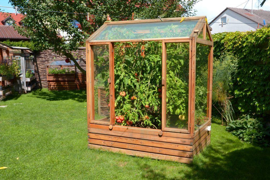 Kleingewachshaus Tomatenhaus Projekt Garten Pinterest Garten