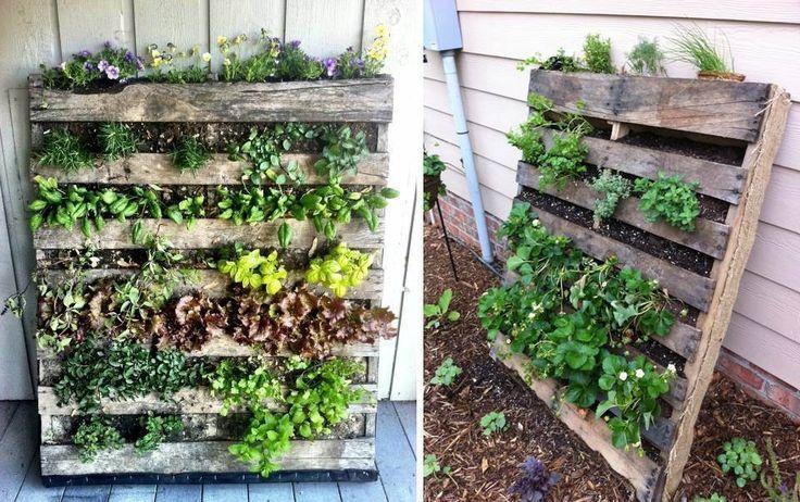 Cómo Hacer Una Huerta Vertical Con Pallet Huertos Verticales Como Hacer Un Huerto Jardin Vertical Con Botellas