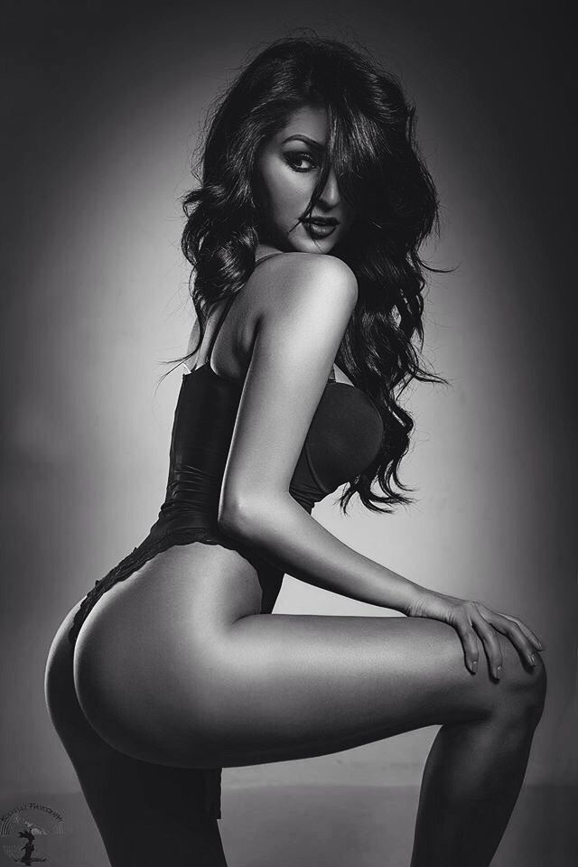 Beautiful and sexy women posing stock image