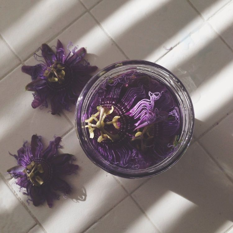 Passion Flower Tincture Aquariansouldesigns Com Aquarian Soul Herbalism Herbs Herbal Tinctures