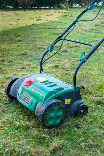Fall Lawn Maintenance: Should You Power Rake Or Aerate?