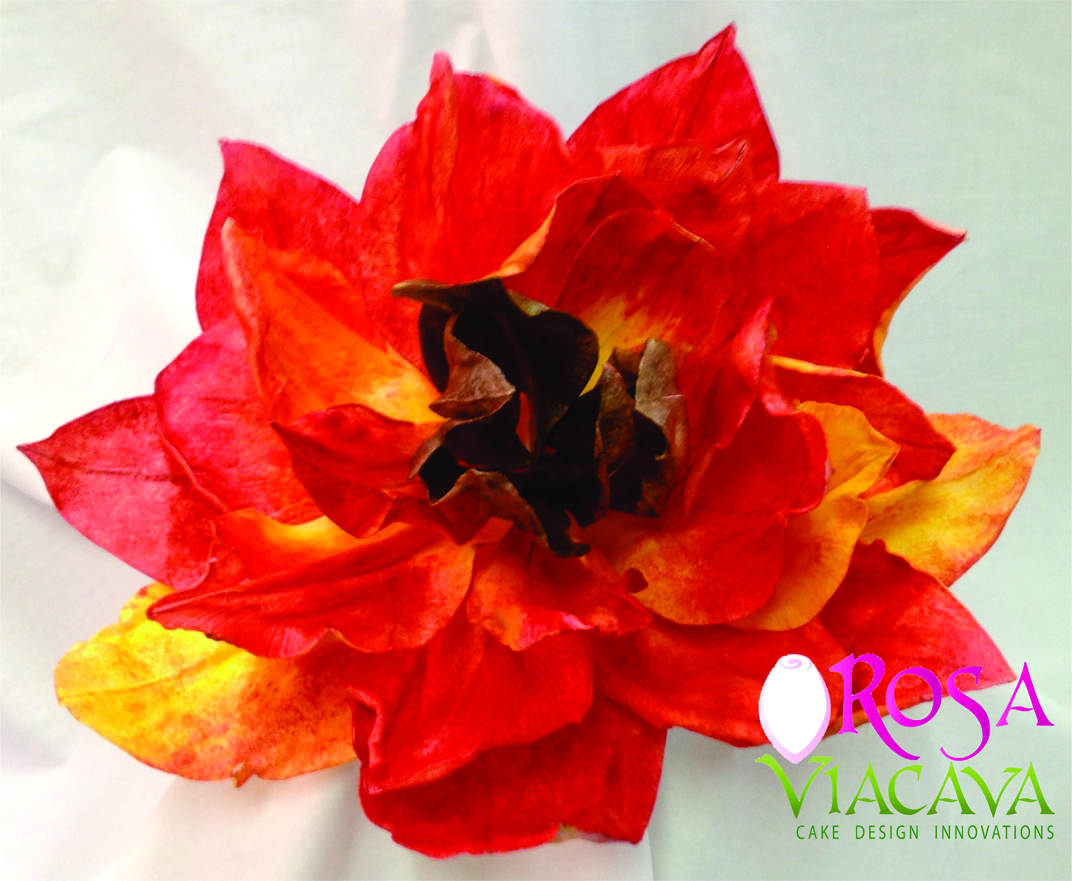 Firebird Flower Make In Rice Paper Wafer Paper Flowers Pinterest