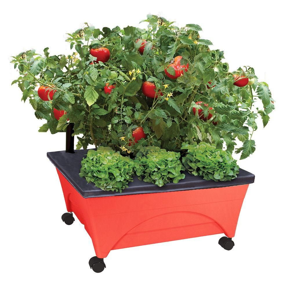 City Pickers 24 5 In X 20 5 In Patio Raised Garden Bed Kit With Watering System And Casters In Tomato Red Raised Garden Bed Kits Raised Garden Beds Self Watering Planter
