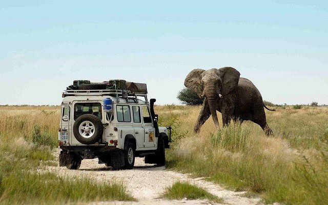 Land Rover Defender 4x4 Legend #Landrover #Land #Rover #Defender #adventure  #offroad #camping #travel #… | Land rover, Land rover defender, Land rover  defender 110