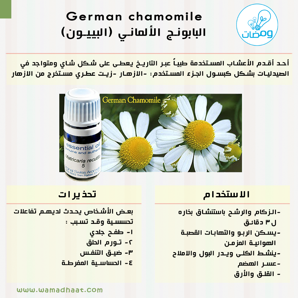German Chamomile البابونج الألماني البييون المصدر Fundamentals Of Pharmacognosy And Phytotherapy Abdullah Faris Wamadhaat Chamomiles Slu