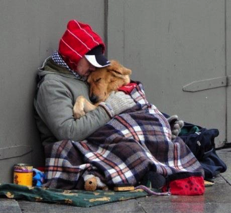 Pin von Frau Herta auf Animal love (mit Bildern) Bester