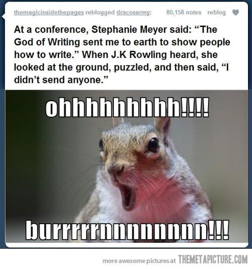BAHAHAHA. The squirrel is what makes this.