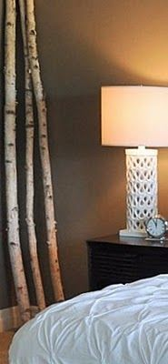 should put my birch branches in our bedroom.