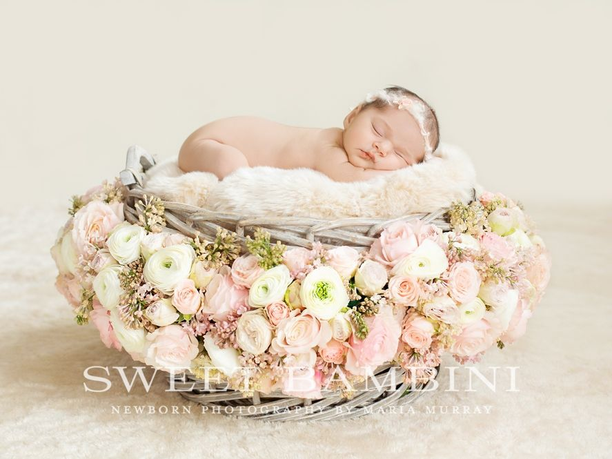 Baby Photoshoot With Flowers