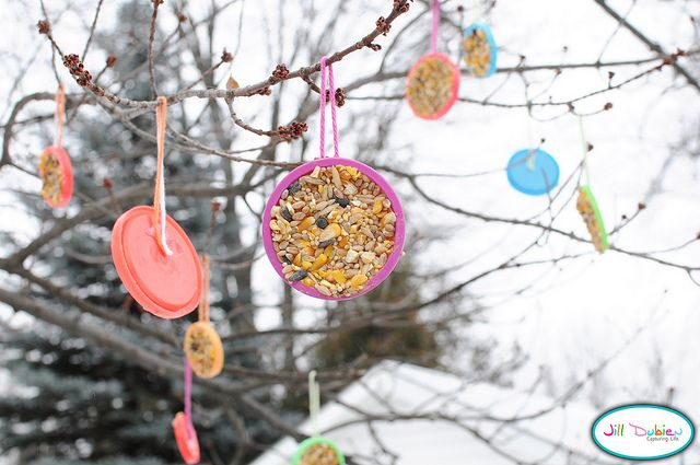 mangeoire a oiseaux / couvercle avec peanut butter et graines - Bird feeder in lids, with peanut butter and seeds