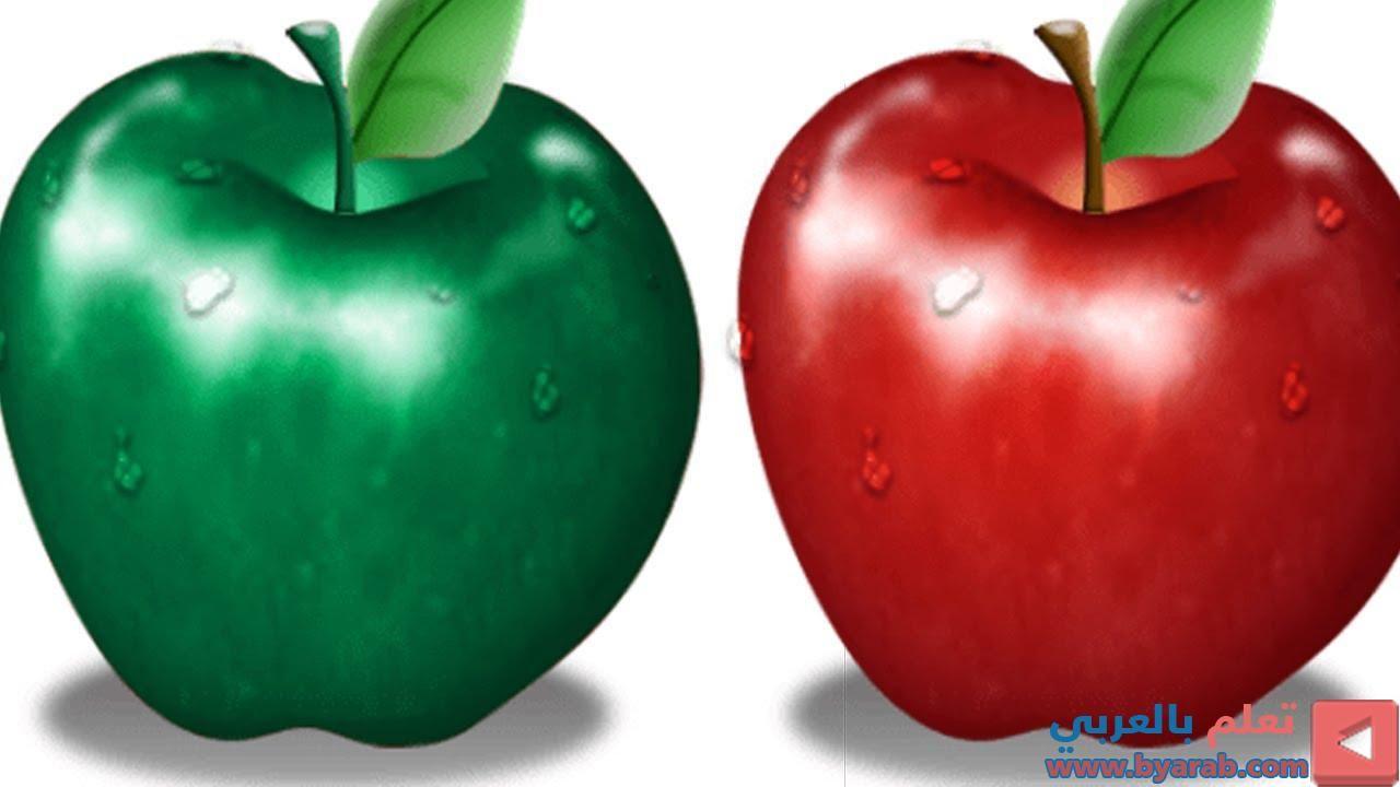 كورس احتراف Photoshop Cc 2019 Adjustments تغيير لون الصورة Vegetables