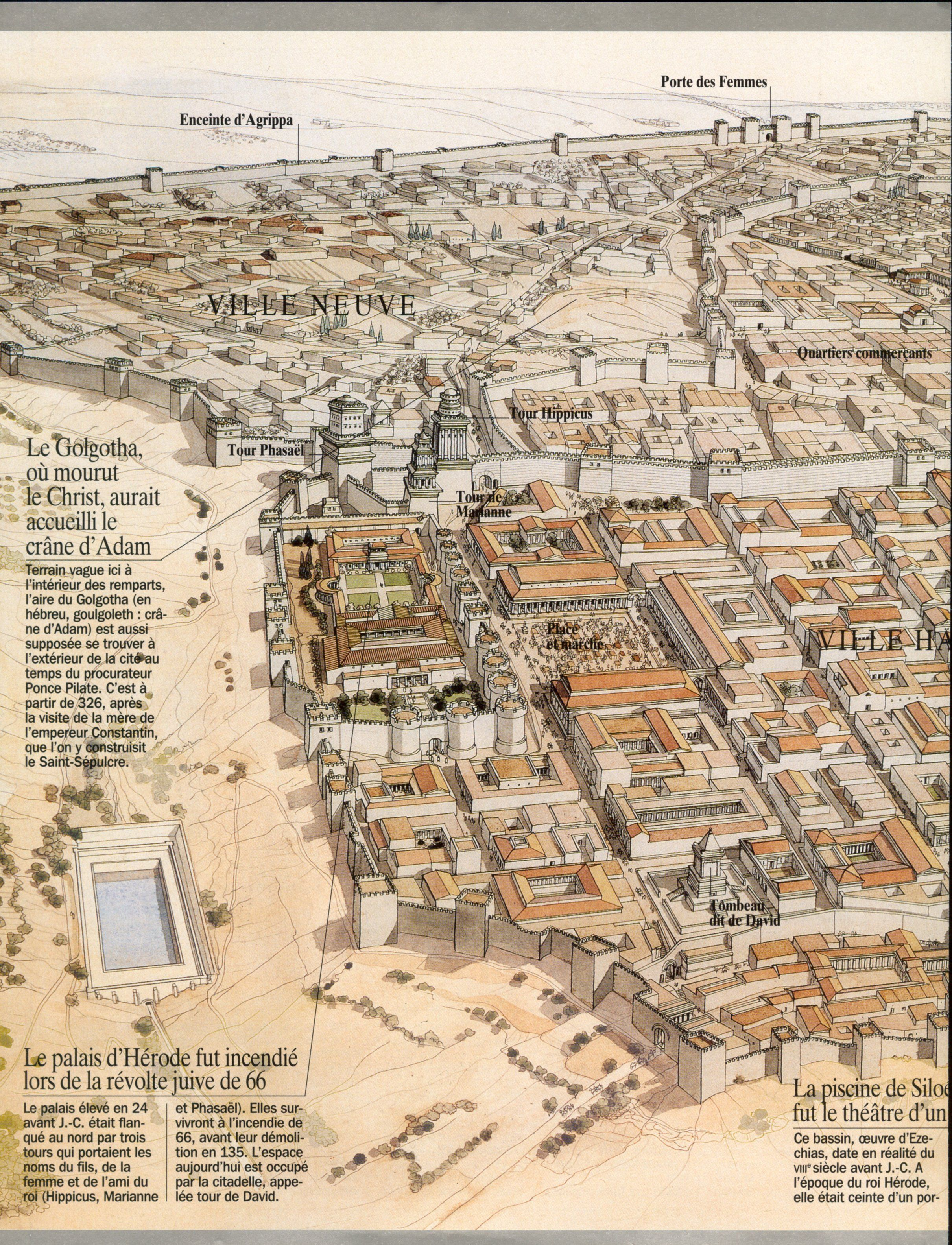 Jerusalem of Herod the Great  (37 BC) J.C. Golvin #ancientarchitecture