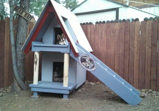 The Kids Chillin In Their 2 Story Dog House We Built In Big Bear