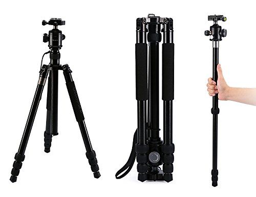 Beaspire Camera Lightweight Travel Tripod with Ball Head at September 22 2019 at 03:22PM. Buy it now. Price may increase soon. Don't miss Amazon Deals by following me. #AmazonDeals #AmazonDealsShoppingProducts #AmazonDealsShopping #AmazonDiscount #DealsAndSteals #DealsAndStealsAmerica #goldbox #discount #deals #usa.