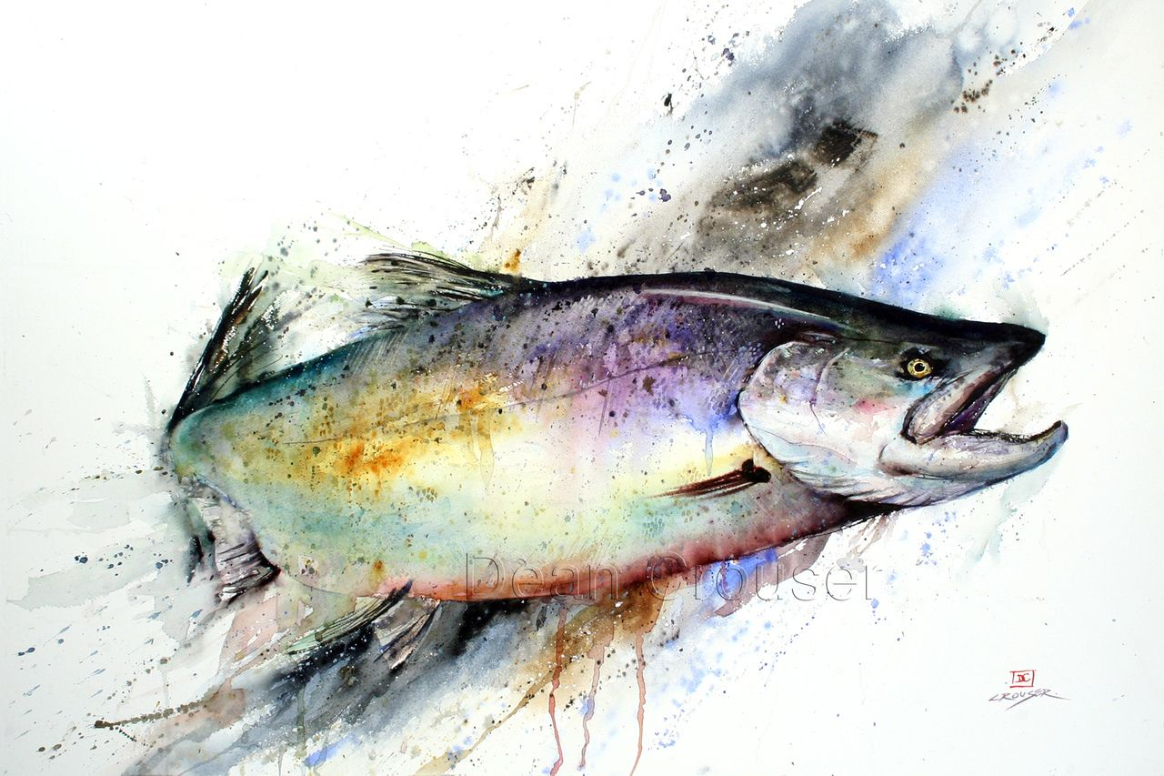 How To Watercolor Salmon Google Search Watercolor Fish