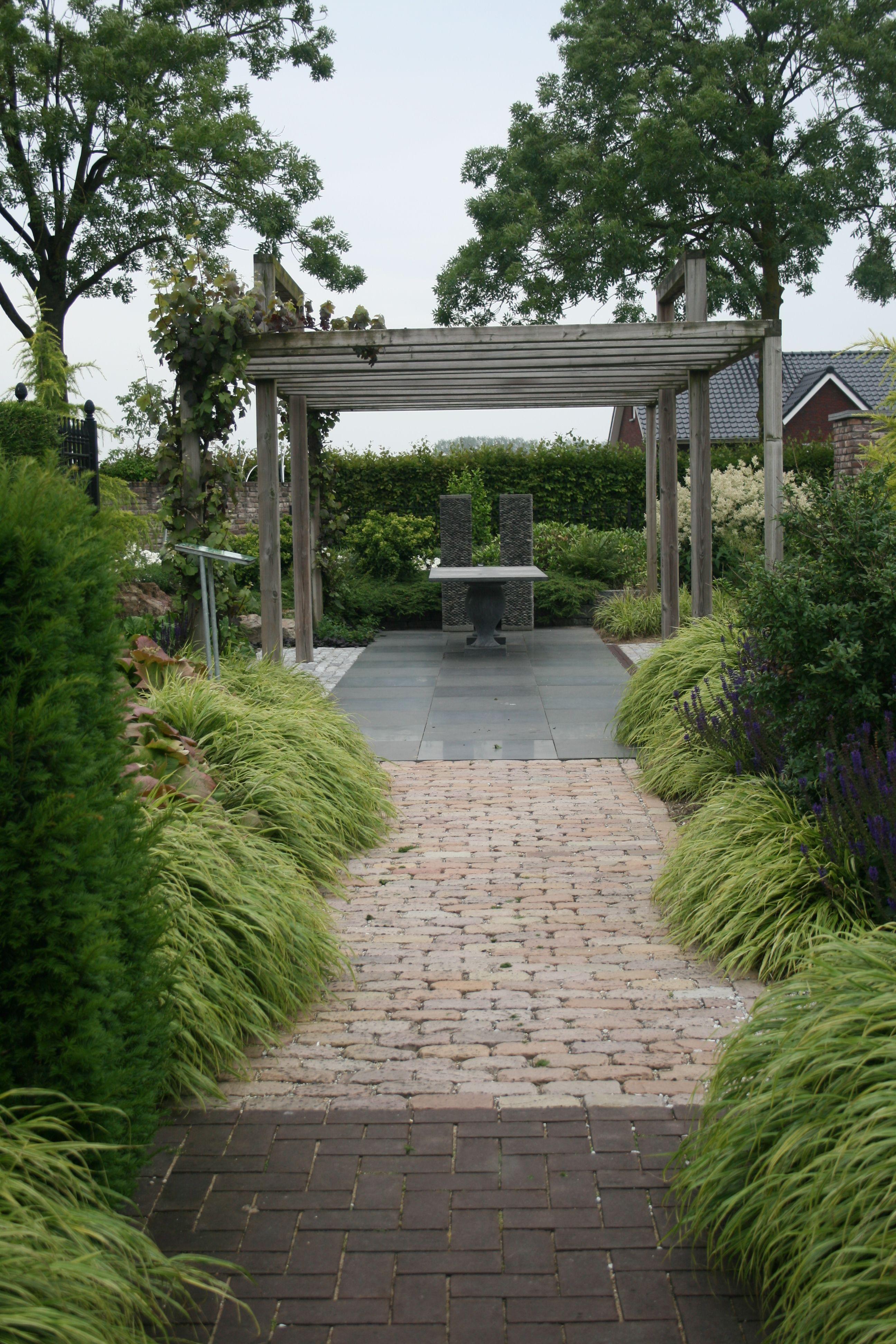 Japanwaldgras Gartenreise Holland Appeltern Garten Ideen Garten Gras