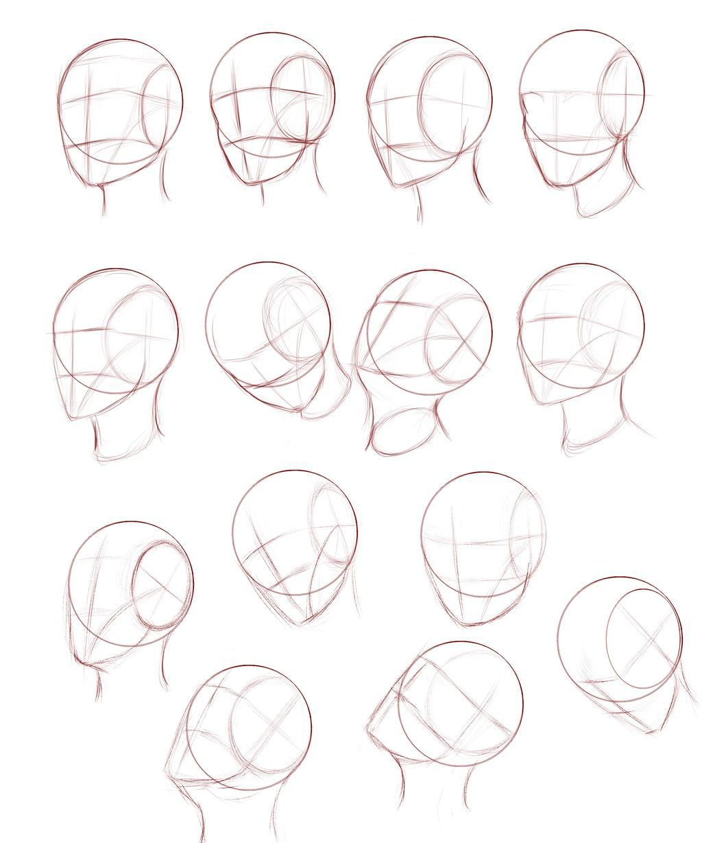 Pin On Drawing The Head