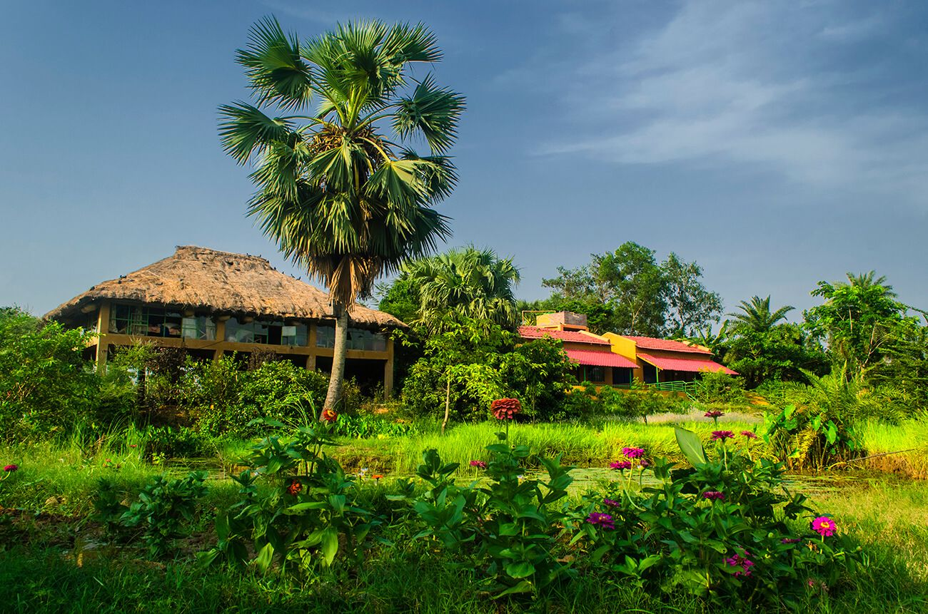 16 One Day Trips From Kolkata One Day Trip Near Kolkata Treebo One Day Trip West Bengal Cool Places To Visit