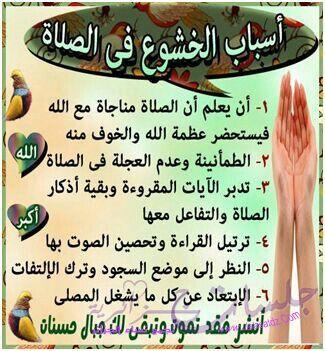 اسباب الخشوع في الصلاة Quran Verses Cool Words Peace Be Upon Him