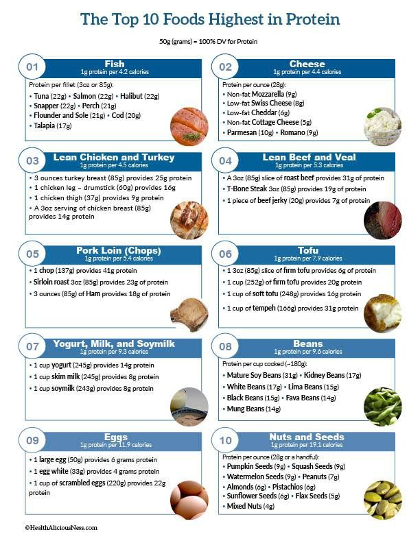 It's just a photo of Tactueux Printable List of High Protein Foods