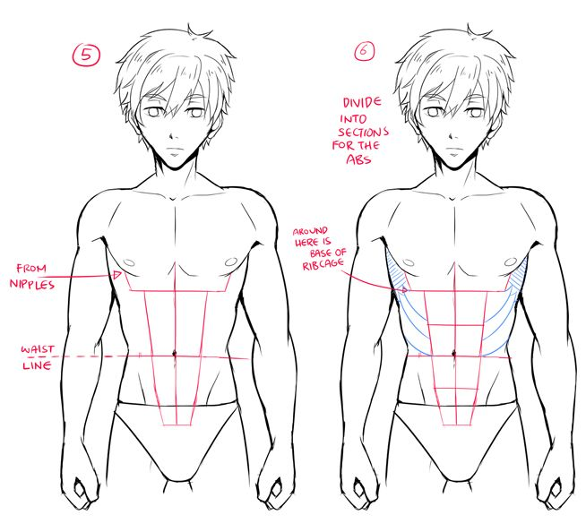 How To Draw Male Characters World Manga Academy Guy Drawing How To Draw Abs Body Drawing