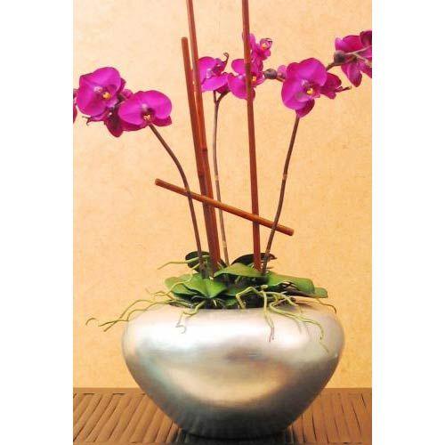 Silver Leaf Orchid Vase 4995 Dorm Pinterest Orchid