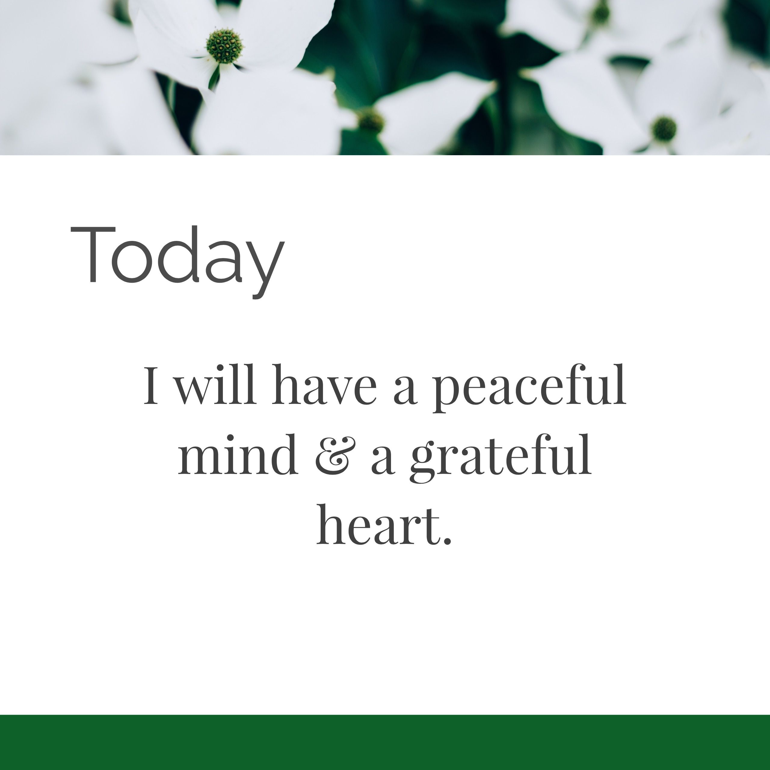 Today I Will Have A Peaceful Mind A Grateful Heart Affirmations Quotes Good For The Soul Affirmation Quotes Daily Affirmations Grateful Heart
