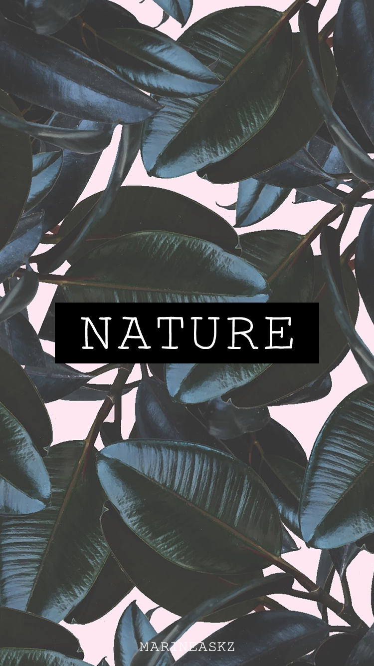 instagram highlight cover 🌿 instagram stories nature