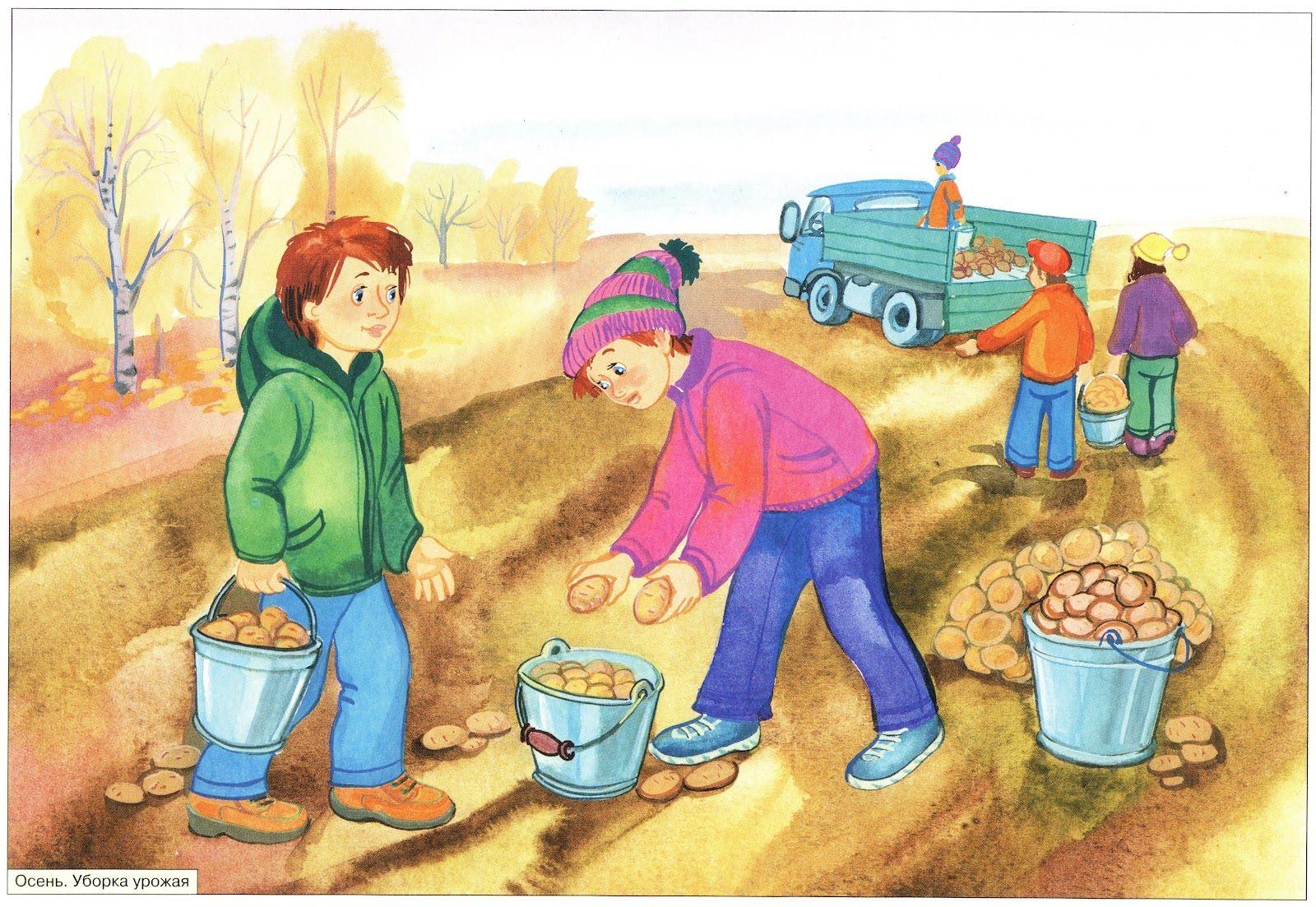 Картинки для детей работа в саду и огороде, именем