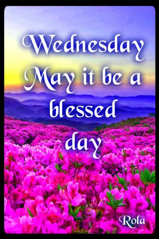 Wednesday Morning Quote Wwwrenewyourhealthus Days Of The Week
