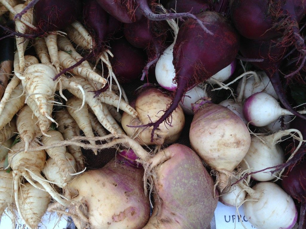 Our veggie of the week: root veggies!  Tips, tricks, and recipes.